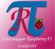 """Érintőkijelző ház Raspberry PI-hez és 7"""" DSI kijelzőhöz - fekete/fehér"""